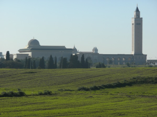 Grand Mosque of Carthage...overlooks Tunis from north of the city