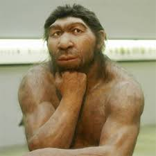 Neanderthal...probably brighter than most of the members of the Tennessee State Legilsature...