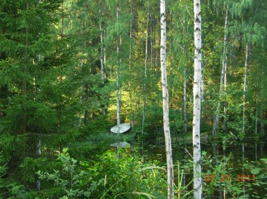 Central Finland: Summer Scene – July 20, 2011. Chez Marjut