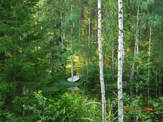 Central Finland: Summer Scene – July 20, 2011. Chez Marjut