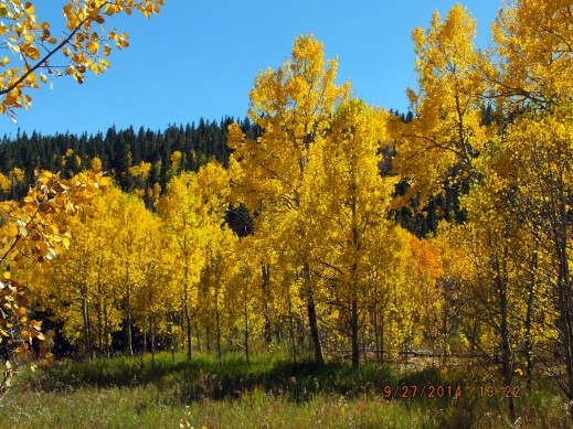 On Apex Valley Road - near Central City, Colorado - September 27, 2014
