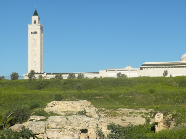 Grand Mosque of Carthage in back ground; in foreground early Christian religious site (4th century AD) where St. Augustine lived and work. The mosque was paid for by Ben Ali, after whom it was originally named. The day that Ben Ali fled the country his name was removed