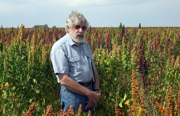 JohnMcCammant in his quinoa field in Mosca, Colorado (near Alamosa)