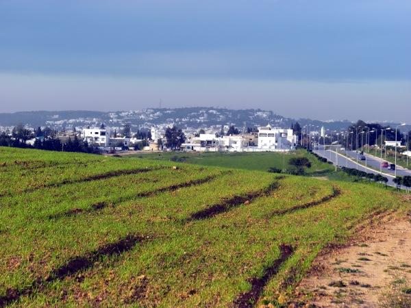 Amilcar, Tunisia, not far from La Marsa where Dan Cetinich lived as a Peace Corps volunteer